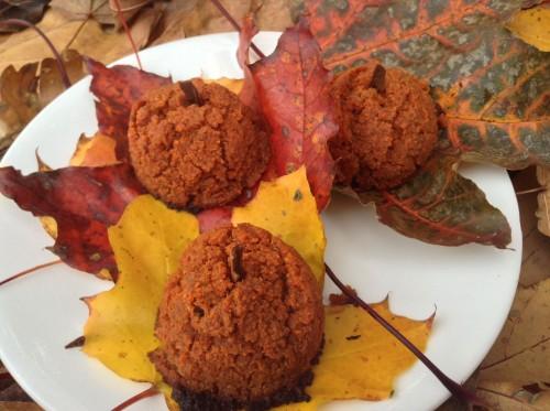 Fall Recipes Everyone Can Eat!